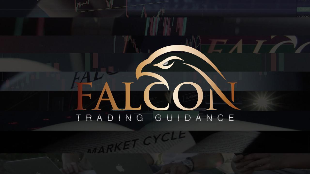 Falcon FX Pro